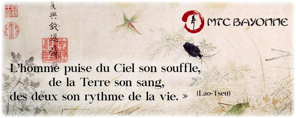citation medecine chinoise